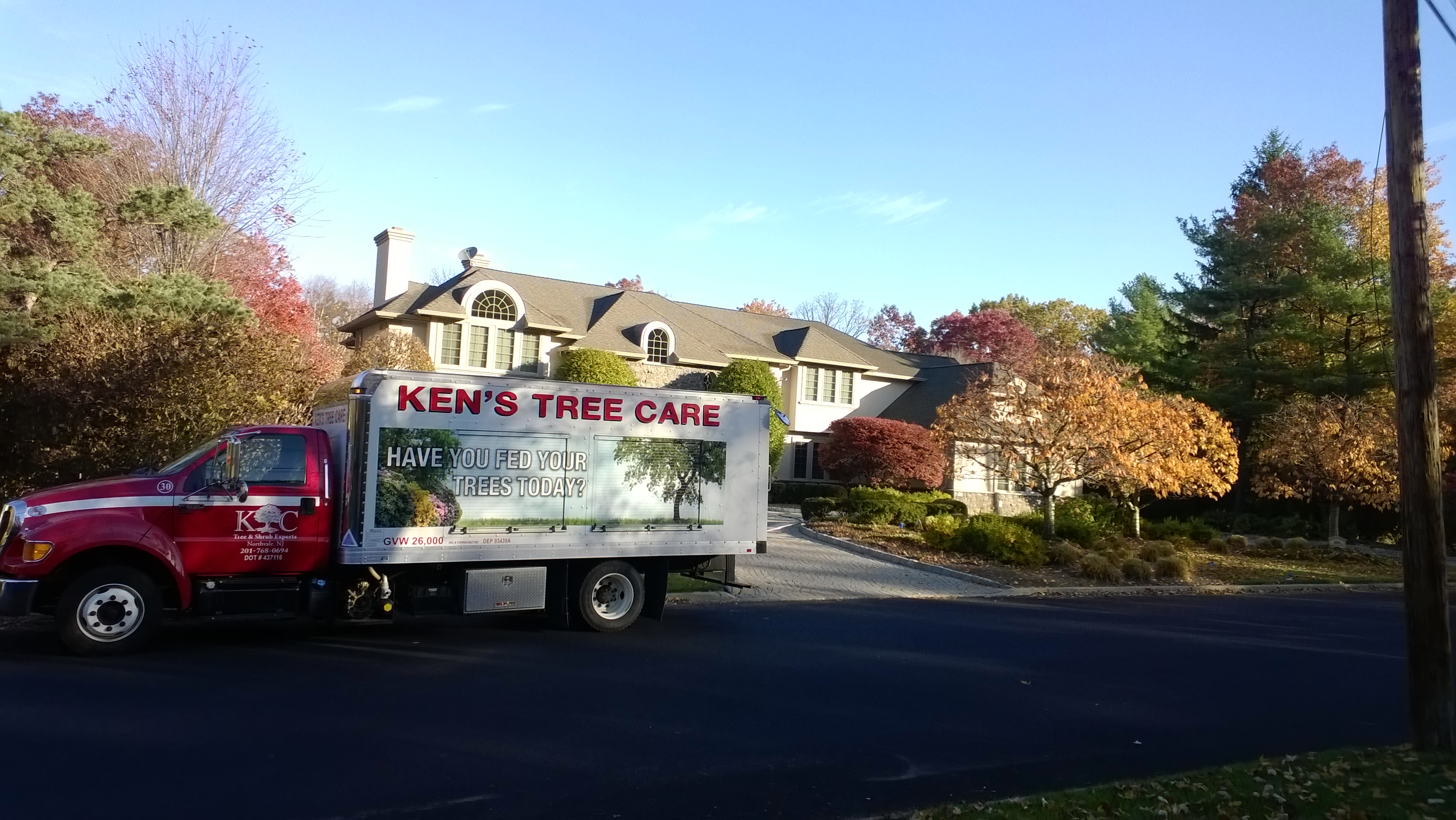 Kens Tree Care on the job